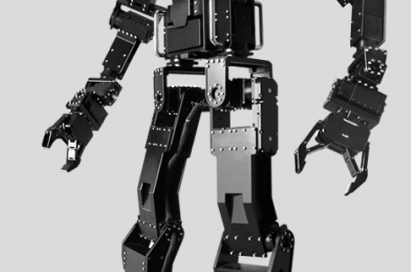 A sample image of the robot