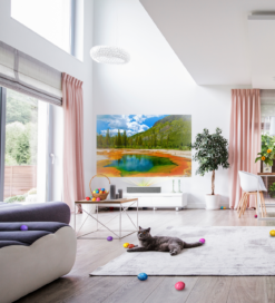 A modern living space equipped with LG products and a cute cat playing on the carpet.