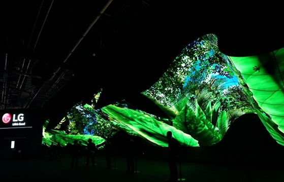A wide-angle shot of LG Wave in the large and dark CES 2020 convention hall while displaying the vibrant greens and blues of a rainforest.